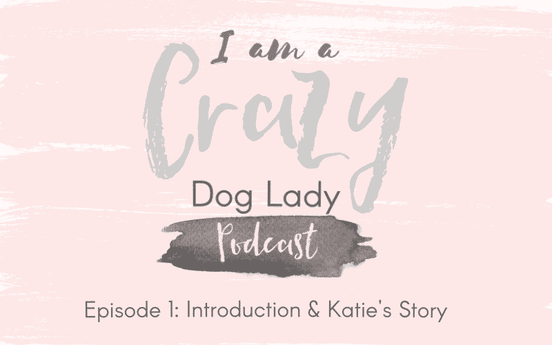 Introduction and Katie's Story – Welcome to I Am A Crazy Dog Lady