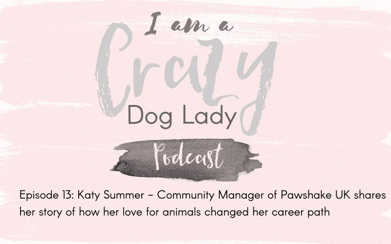 Episode 13: Katy Summers Shares How Her Love Of Animals Changed Her Career Path